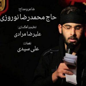 محمدرضا نوروزی عاشق هوشیار