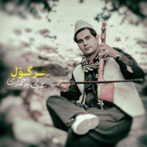 علی احمدی خر گول