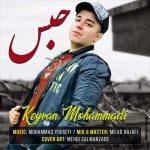 کیوان محمدی حبس