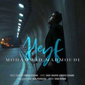 محمد محمودی حیف