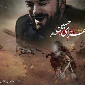 مداحی سید طالع برادیگاهی عزای حسین