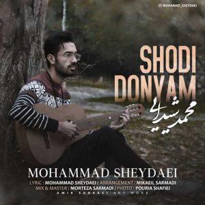 محمد شیدایی شدی دنیام