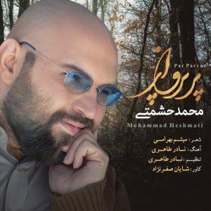 محمد حشمتی پر پرواز