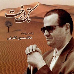 دانلود آلبوم غلامحسین اشرفی تک درخت