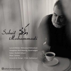 سهیل محمدی دلم گرفته