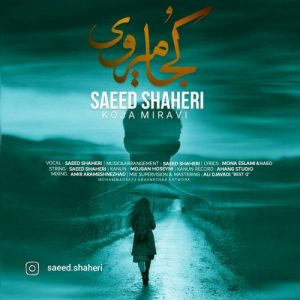 سعید شاهری کجا می روی