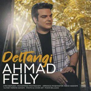 احمد فیلی دلتنگی