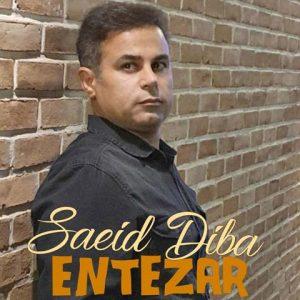 سعید دیبا انتظار