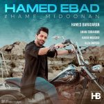 حامد عباد همه میدونن