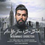 محمد قریشی از یه جایی به بعد
