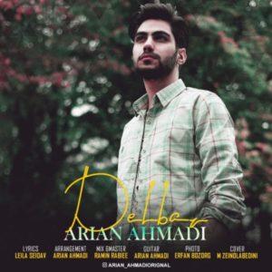 آرین احمدی دلبر