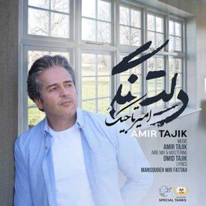 امیر تاجیک دلتنگی