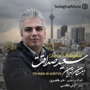 سعید صداقت زمستان تهران