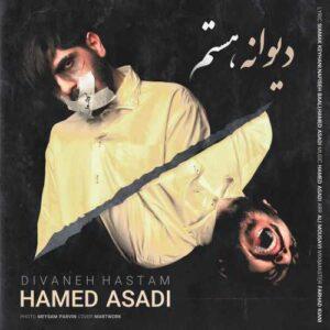 حامد اسدی دیوانه هستم