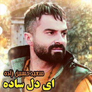 سعید حسین زاده ای دل ساده