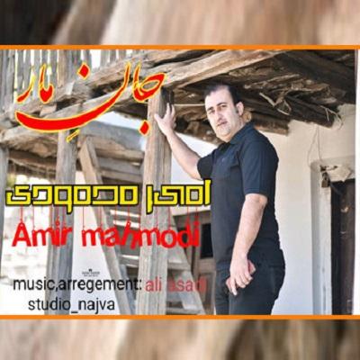 امیر محمودی جان مار