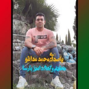 محمد مدانلو شهر به شهر