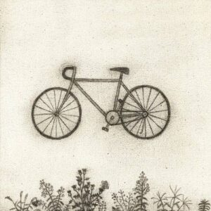 کیم نامجون Bicycle