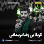 گلچین مداحی محرم 1400 کربلایی رضا نریمانی