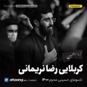 مداحی شب تاسوعا محرم 1400 کربلایی رضا نریمانی
