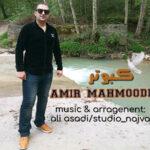 امیر محمودی کبوتر