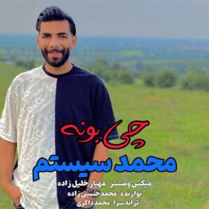 محمد سیستم چی بونه