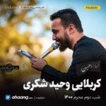 مداحی شب دوم محرم 1400 کربلایی وحید شکری