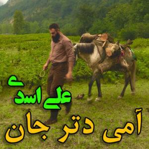 علی اسدی آمی دتر جان
